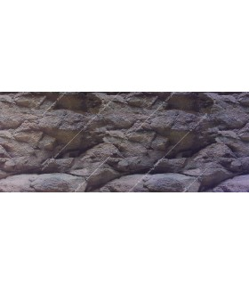 Poszter, sziklás (50 cm magas) / 1 m