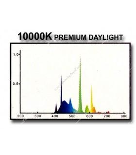 Odyssea fénycső T5 54W 10000K (115 cm)