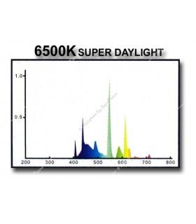 Odyssea fénycső T5 39W 6500K Daylight