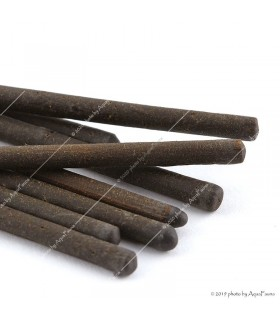 GlasGarten Shrimp Lollies - Walnut (dió) sticks - 8 db