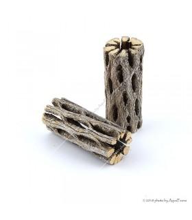 """Cholla kaktusz 3"""" (Cholla wood) fa dekoráció - 8 cm"""