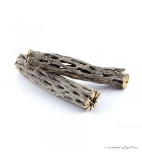"""Cholla kaktusz 6"""" (Cholla wood) fa dekoráció - 15 cm"""