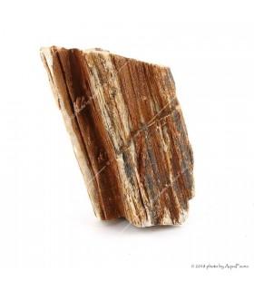 Dekorkő - Stonewood / kg