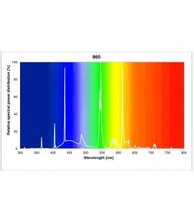Sylvania LuxLine Plus FHO 24W 865 Daylight 6500K - T5 fénycső - 55 cm