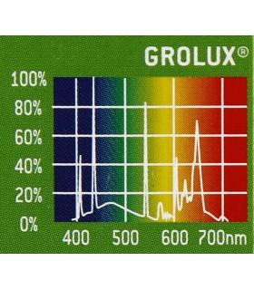 Sylvania GroLux FHO 54W - T5 növényes fénycső - 115 cm