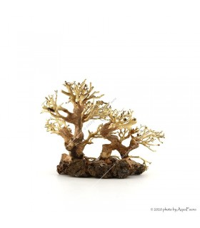Bonsai Small Family dekorfa - 25x20x10 cm